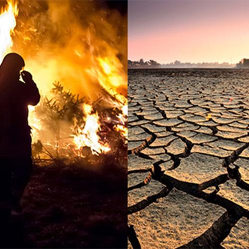 biến đổi khí hậu ảnh hưởng đến môi trường