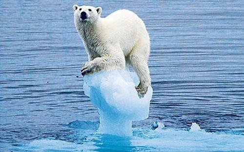 trái đất nóng lên làm băng tan